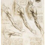Леонардо Да Винчи 9