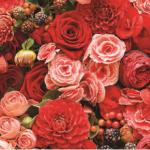 Розы № 0043