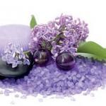 Фиолетовые цветы 0283
