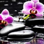 Орхидеи 0650