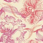 Орхидеи 1607