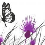 Фиолетовые цветы 5498