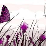 Фиолетовые цветы 5612