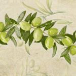 Оливки 5917