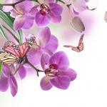 Цветы и фрукты холст 14